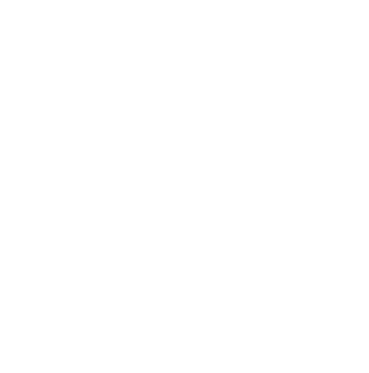 NorthSails_Bullet_white